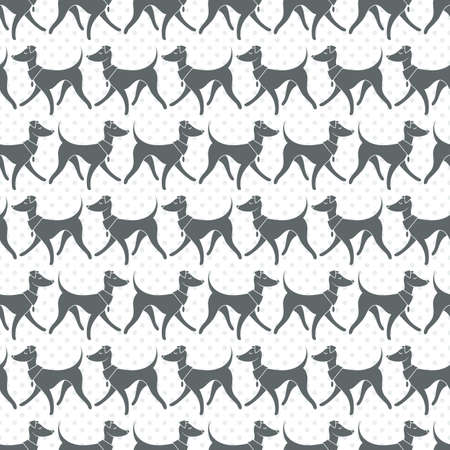 leggy: Seamless Vector Pattern with Pretty Walking Italian Greyhounds.