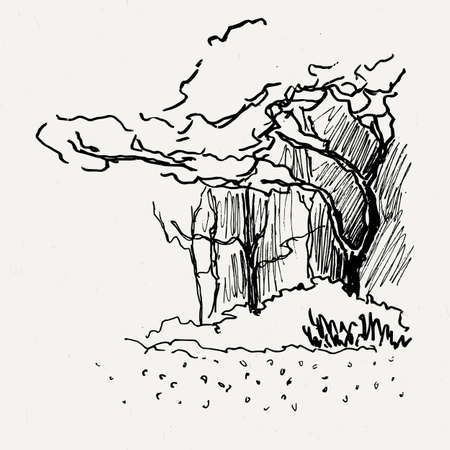 traced: Landscape nature park trees and bushes. Ink traced illustration.