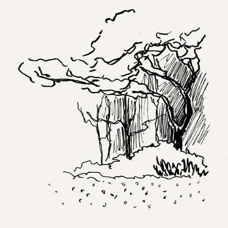 bushes: Landscape nature park trees and bushes. Ink traced illustration.