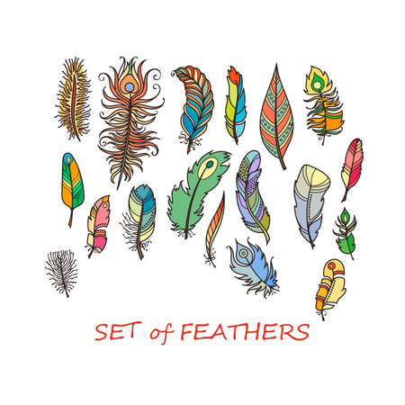 Vector Ornate Set of Stylized and Abstract Feathers. Elements for Design and Coloring Pages. Illustration