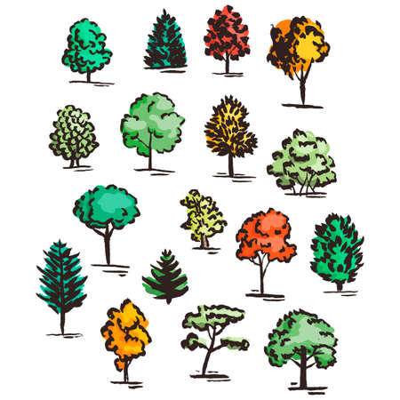 cypress: Set of hand drawn colorful trees. Ink style. Vector collection.