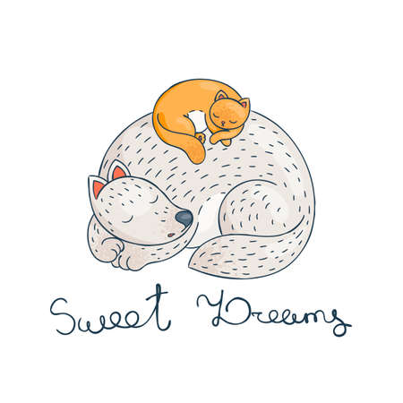 The cat is sleeping comfortably on the dog. Furry friends. Sweet dreams. Vector illustration. Illustration