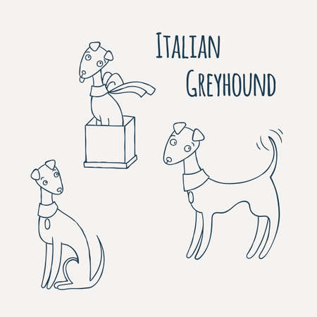 italian greyhound cartoon dog set coloring page vector illustration stock vector 68323025