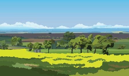 tillage: Campi verdi e alberi sotto il cielo blu Vettoriali