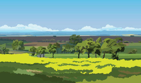 tillage: Green fields and trees under the blue sky