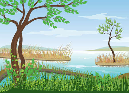 landscape Stock Vector - 10070004