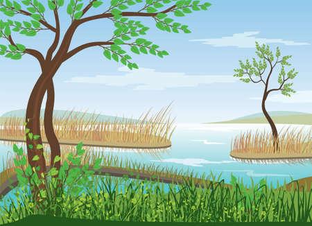 labranza: paisaje Vectores