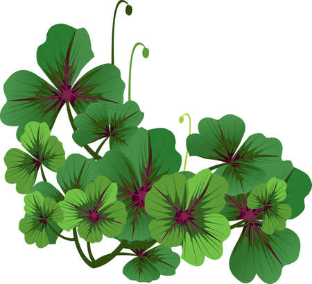 four leafed: Clover corner Illustration