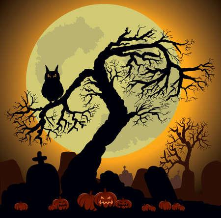 moon  owl  silhouette: Halloween Background Illustration
