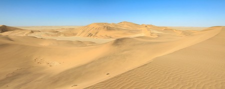 skidmark: Big sand dunes panorama. Desert or beach sand textured background.