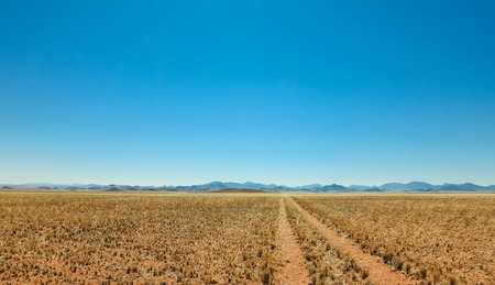 Straight desert dirt road track passes a grassland towards mountains. Stock Photo