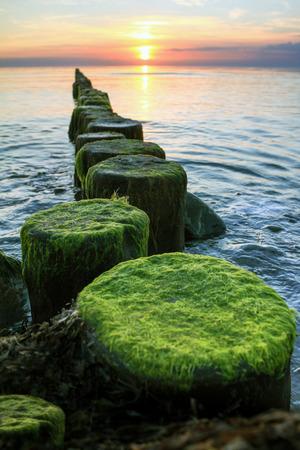 groynes: Wooden spur dykes in coastal sunset. Groynes and sea water.
