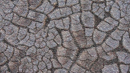 Realistic Illustration of Cracked Mud Soil with stones  by Lack of Water