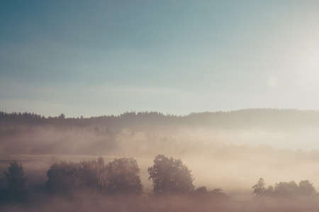 有霧的早晨