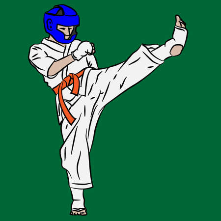Karate or taekwondo. Fight in vector action. Kick from 3d art.