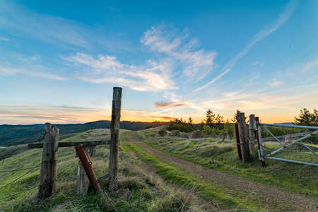 Road leading through a gate toward the sunset in the Marin hills near Fairfax, CA. Banque d'images - 122471574