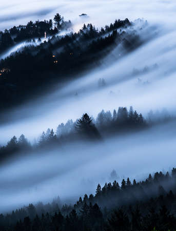 Long exposure photograph of fog moving over trees and houses. Taken at night with full moon. Stock Photo
