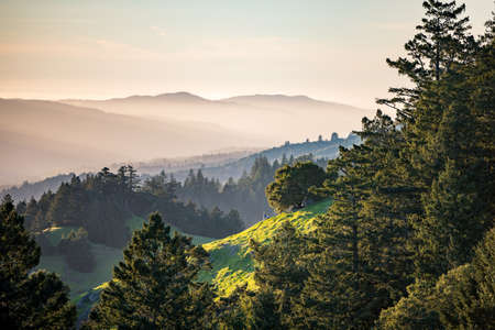 Panorama of green hills and pine trees with for and mountains in distance.