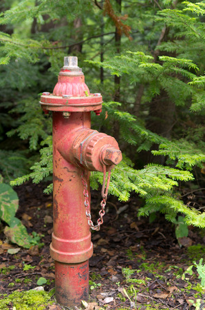 old fire hydrant: An old red fire hydrant in a rural setting.