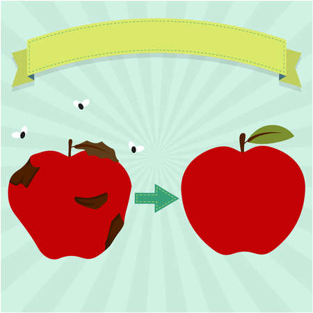New apple and rotten apple with flies. Blank ribbon for insert text. Ilustracja