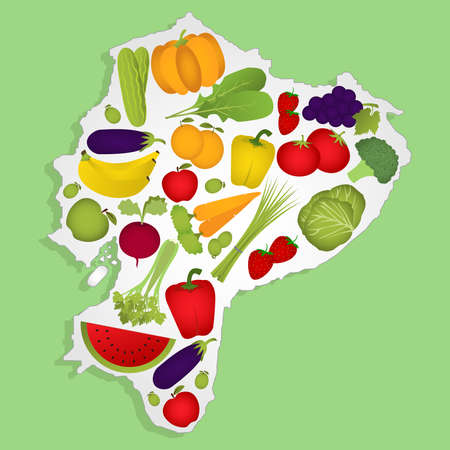 equator: Map of Equator full of fruits and vegetables (tomato , apple, orange , eggplant, cabbage, cucumber , broccoli, grapes, arugula, banana, peppers, squash , celery, green onions , beets, strawberries, watermelon, carrot). Green background. Illustration