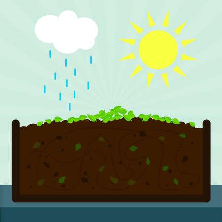 Processus de compostage. Décomposé laisse sur le terrain. Irrigation et de l'évaporation dans l'écosystème. Banque d'images - 39349745