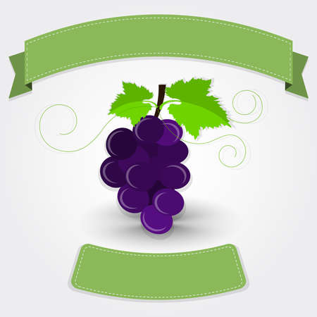 in insert: Grape with ribbon. Purple grape with blank ribbon for insert text. Gray gradient background with shadow.