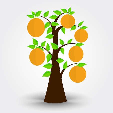 Oranger isolé sur un fond gris avec des ombres. Modifiable.
