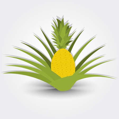 pineapple tree: �rbol de la pi�a. �rbol pi�a aislado en un fondo gris con la sombra. Editable.