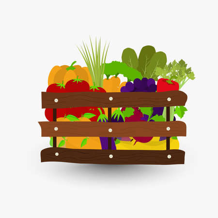 Fruits and vegetables in a wooden crate. Wooden boxes containing oranges grapes tomatoes carrots eggplant bananas beets green onions celery arugula peppers pumpkins. Isolated with shadow. Illustration