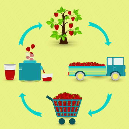 Strawberry juice production steps. Strawberry tree, harvest, transport, sale at the grocery store, production of strawberry juice at home. In a circular scheme.