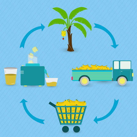Banana juice production steps. Banana tree, harvest, transport, sale at the grocery store, production of banana juice at home. In a circular scheme.