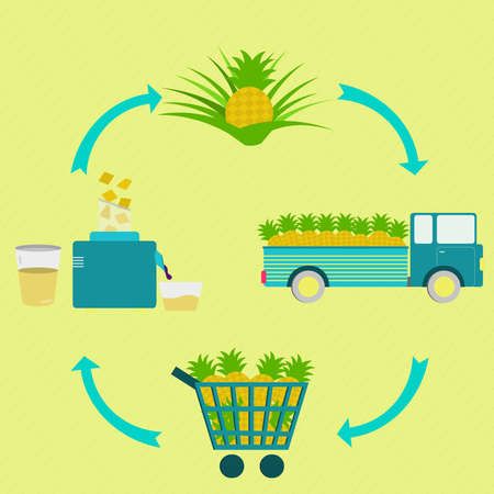 pineapple juice: Process of pineapple juice. Pineapple juice production steps. Pineapple tree, harvest, transport, sale at the grocery store, production of pineapple juice at home. In a circular scheme.