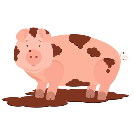 chubby cartoon: Cute pig dirty in mud. Isolated. White background.