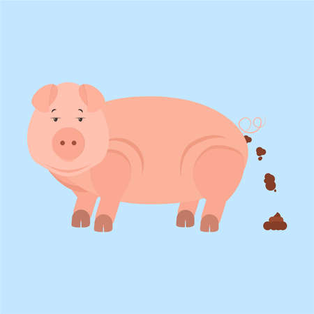 Pig pooping. Isolated. Blue background.