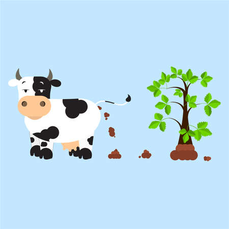 compost: Dutch dairy cow pooping and fertilizing the land. Tree rising over compost. Isolated. Blue background.