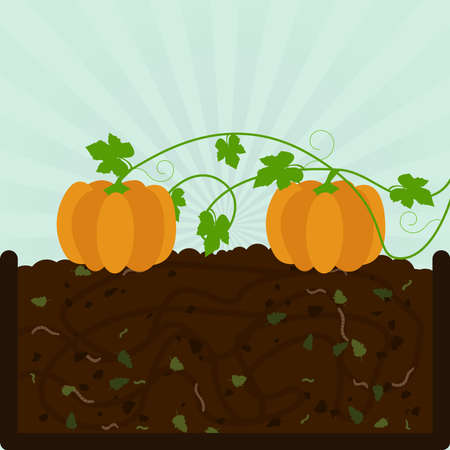 Planting pumpkin. Composting process with organic matter, microorganisms and earthworms. Fallen leaves on the ground.