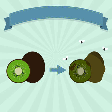 rotten: Rotten kiwifruit with flies and new kiwifruit. Blank ribbon for insert text.