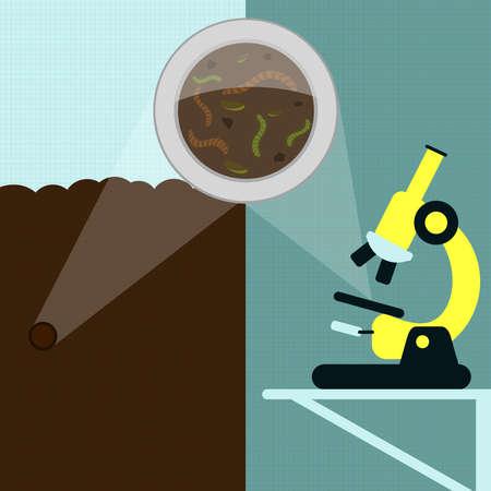 lombriz de tierra: Lupa ampliación de lombrices y otros insectos en la tierra. muestra de suelo que se analiza en el microscopio en el laboratorio. Vectores