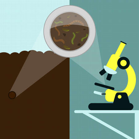 earthworm: Magnifying glass enlarging earthworm and other insects on the earth. Soil sample being analyzed under the microscope in the laboratory.