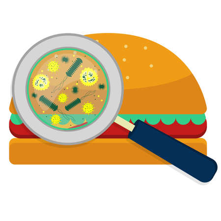 Magnifying glass showing bacteria on hamburguer. White background.