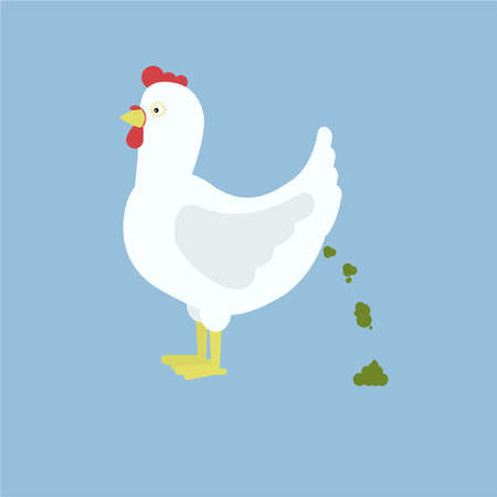 Chicken pooping. Isolated. Blue background. Illustration