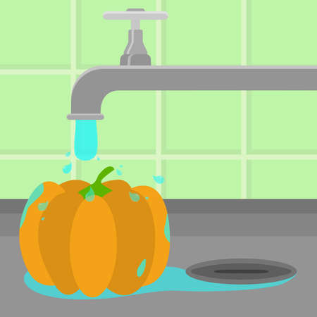 Pumpkin being cleaned and washed in a sink in a kitchen. Running tap water. Vetores