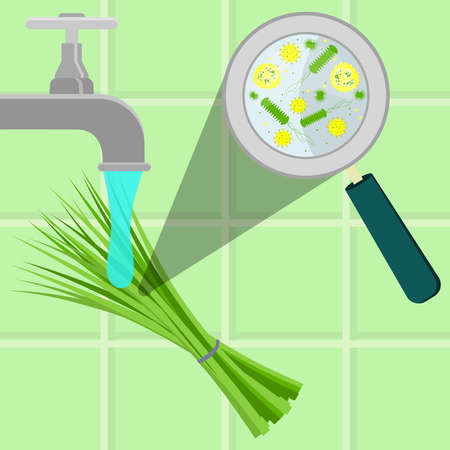 contaminated: Contaminated chive being cleaned and washed in a kitchen. Microorganisms, virus and bacteria in the vegetable enlarged by a magnifying glass. Running tap water.