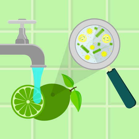 Contaminated lime being cleaned and washed in a kitchen. Microorganisms, virus and bacteria in the vegetable enlarged by a magnifying glass. Running tap water. Illustration