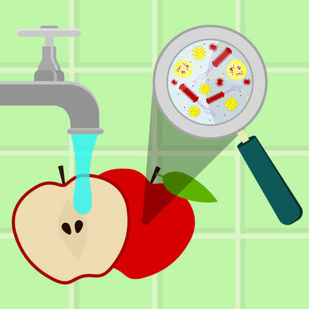 cleaned: Contaminated apple being cleaned and washed in a kitchen. Microorganisms, virus and bacteria in the vegetable enlarged by a magnifying glass. Running tap water.