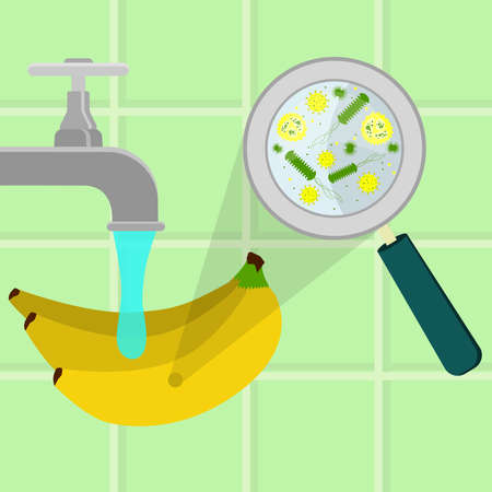 Contaminated banana being cleaned and washed in a kitchen. Microorganisms, virus and bacteria in the vegetable enlarged by a magnifying glass. Running tap water. Illustration
