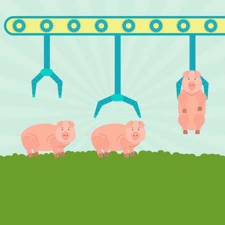porcine: Machine (conveyor) with grippers carrying pigs in the field. Serial production. Concept.