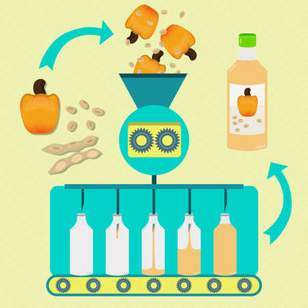 cashews: Cashew and soy juice series production. Fresh cashew and soybean pod with soy being processed. Bottled cashew and soy juice.