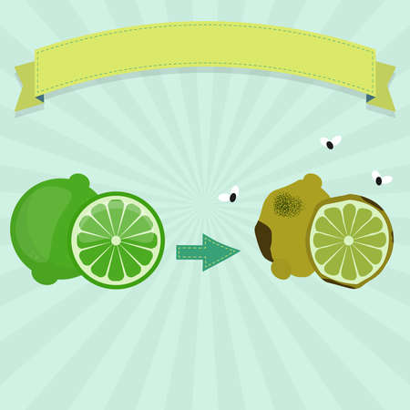 Rotten lime or lemon with flies and fresh lime. Blank ribbon for insert text. Illustration